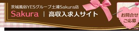 Sakura高収入求人サイト